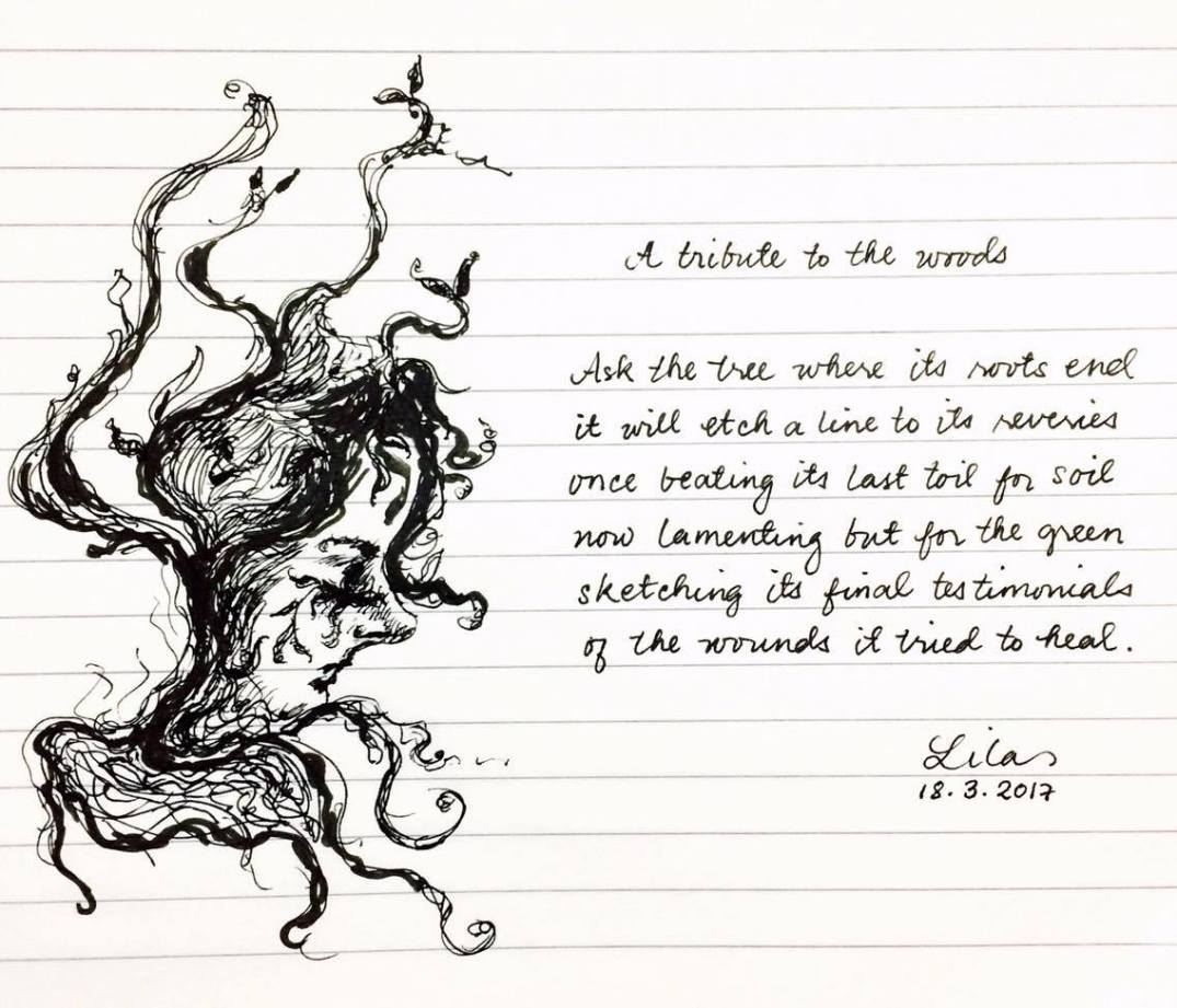 Lines of Lila-Sketches and Scribbles-A tribute to the woods